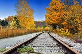 Autumn landscape with railway track — Stock Photo