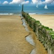 Old wooden breakwater on the beach — Stock Photo #38833969