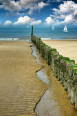 Old wooden breakwater on the beach — Stock Photo