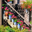 Stock Photo: Staircase with flowers in pots