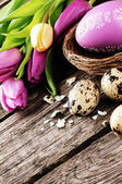 Easter setting in purple tone — Stock Photo
