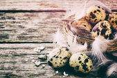 Easter setting with quail eggs — Stock Photo