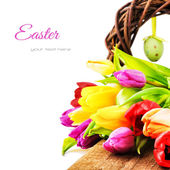 Easter setting with colorful tulips — Stock Photo