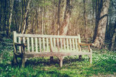 Wooden bench in spring park — Stock Photo