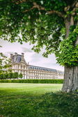 Louvre palace and Tuileries garden — Stock Photo