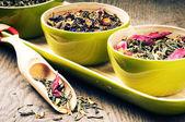 Tè verde fiore — Foto Stock