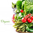 Fresh organic vegetables — Stock Photo #45413179