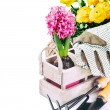 Garden tools and spring flowers — Stock Photo #45807399