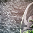 Sneaker closeup — Photo #46644339