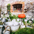 Backyard with vintage garden tools — Stock Photo #47020701