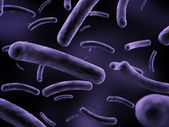 Bacteria illustration — Stockfoto