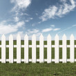 Green field and white fence — Stock Photo #34901999