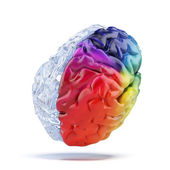 Colored brain — Stock Photo