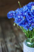 A bunch of beautiful summer flower of Cornflower. — ストック写真