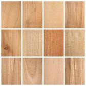 Různé textury dřeva — Stock fotografie