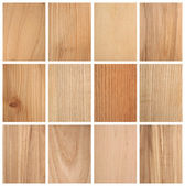 Verschillende hout structuren — Stockfoto