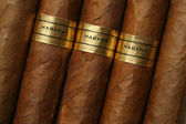 гавана сигары текстуры — Стоковое фото