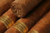 Havana Cigars Texture — Stock Photo