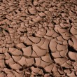 Cracked Dried Earth - Stock Photo