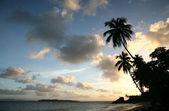 Coucher du soleil des caraïbes — Photo