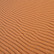 Sahara Desert — Stock Photo #13494485