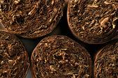 Textura de charutos de havana — Foto Stock