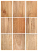 Different Wood Textures — Stock Photo