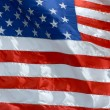 United States Flag — Stock Photo #13568246