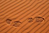 Ślady na Saharze — Zdjęcie stockowe