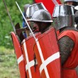 Knights — Stock Photo #12832209