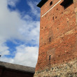 Castle in Finland — Stockfoto #12851348