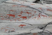 Petroglyphs in Alta, Norway — Стоковое фото