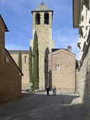 Cathedral of la seu d'urgell — Photo