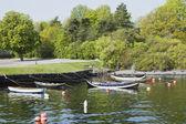 Moored rowboats — Stock Photo