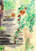 Steps with red flowers,watercolor illustration — Foto Stock