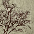 Tree Grunge Background — Foto de Stock