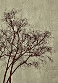 Tree Grunge Background — 图库照片