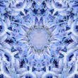 Cold Tones Fractal Pattern — Stock Photo