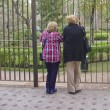 Stock Photo: Two Old Women Talking and Watching the Park