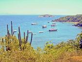 группа катеров в бразильском острове — Стоковое фото