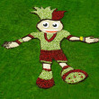 Flowerbed is prepared in Kiev depicting mascot of Euro 2012 — Stockfoto #16835601