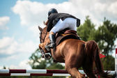 Equestrian Sports — Foto de Stock