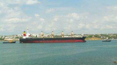 Barco carguero grande y remolcadores. — Vídeo de Stock