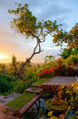 Sunrise on a Bali Garden — 图库照片