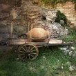 The old bullock cart — Stock Photo