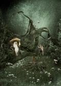 Lesní pohádka — Stock fotografie