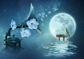 Moonlight Sonata — Stock Photo