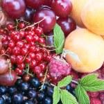 Berries — Stock Photo #13062854