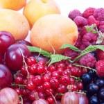 Berries — Stock Photo #13313871