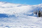 Skiers — Stockfoto